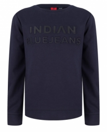 Indian Blue Jeans Sweater 3D Navy